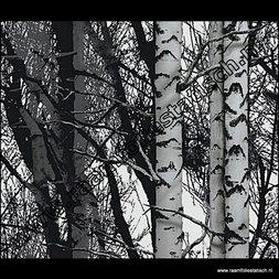 138. Statische raamfolie bomen
