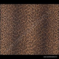 plakplastic jaguar afrika