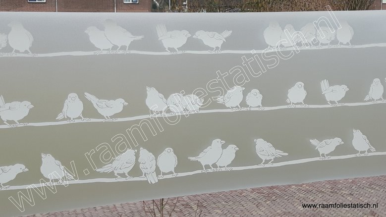 D-c-fix premium static filippa (statische raamfolie vogels 45cm)